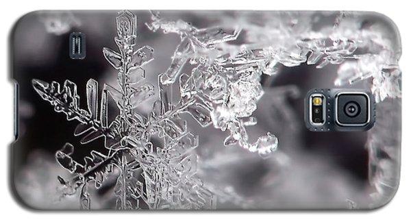 Winter's Beauty Galaxy S5 Case