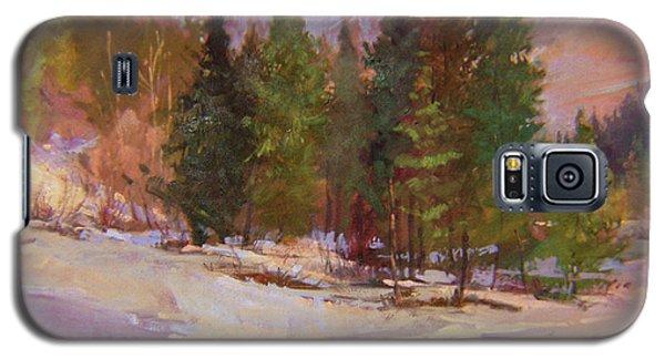 Winter's Eve Plein Air Galaxy S5 Case