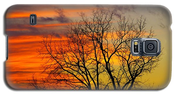 Galaxy S5 Case featuring the photograph Winter's Scene by Donald C Morgan