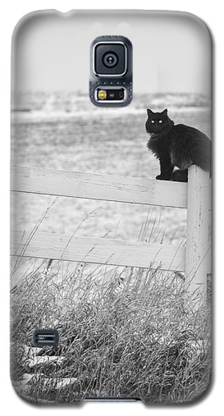Galaxy S5 Case featuring the photograph Winter's Stalker by Rikk Flohr