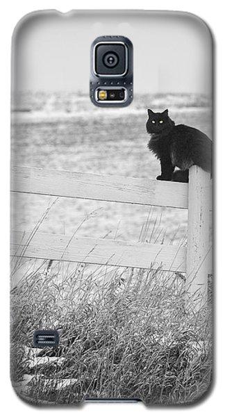 Winter's Stalker Galaxy S5 Case
