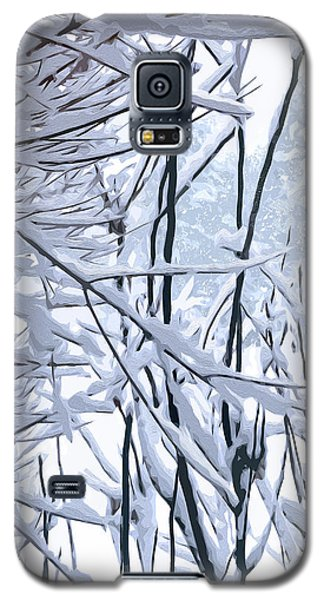 Wintertide Galaxy S5 Case