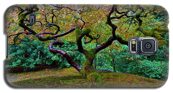 Galaxy S5 Case featuring the photograph Wisdom Tree by Jonathan Davison