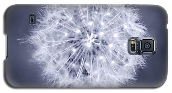 Wish Galaxy S5 Case by Melanie Alexandra Price