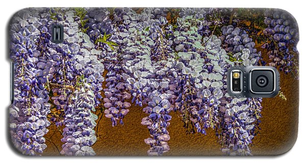 Wisteria Vines Galaxy S5 Case