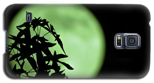 Galaxy S5 Case featuring the photograph Witching Hour by DigiArt Diaries by Vicky B Fuller