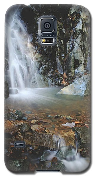 Galaxy S5 Case featuring the photograph With Heart And Soul by Laurie Search