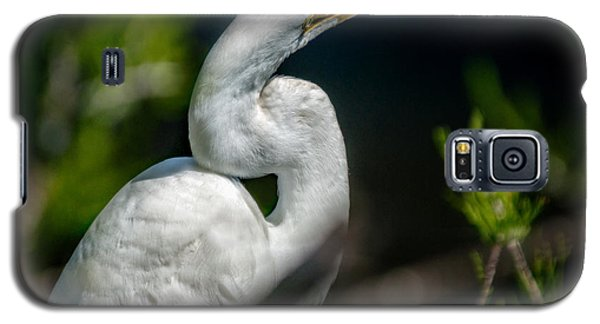 Galaxy S5 Case featuring the photograph White Egret 2 by Christopher Holmes