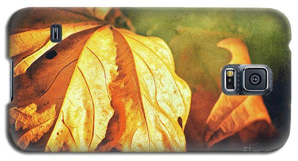Galaxy S5 Case featuring the photograph Withered Leaves by Silvia Ganora