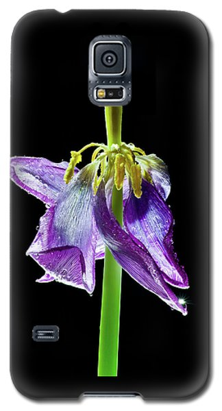 Withering Beauty Galaxy S5 Case