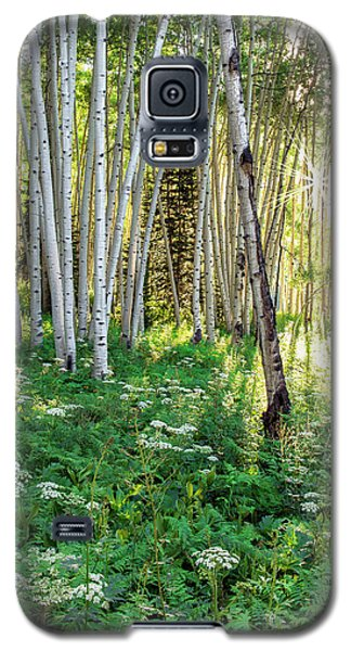Galaxy S5 Case featuring the photograph Within The Forest Deep by Tim Reaves
