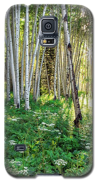 Within The Forest Deep Galaxy S5 Case