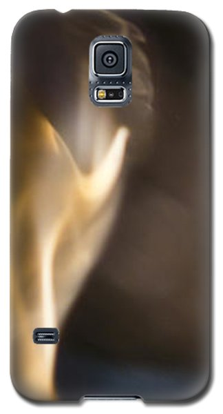 Witnessed Galaxy S5 Case