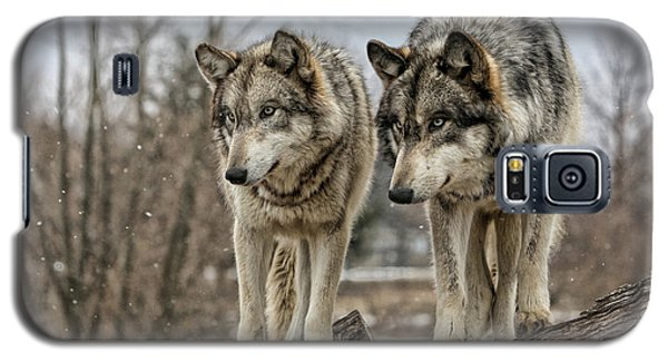 Wolf Pair Galaxy S5 Case