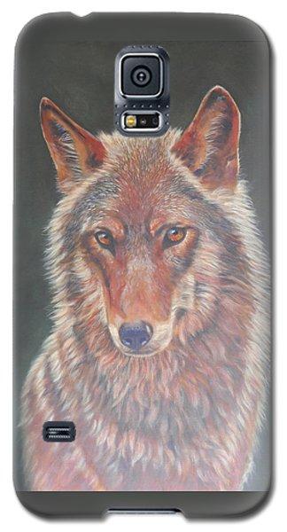 Wolf Portrait Galaxy S5 Case