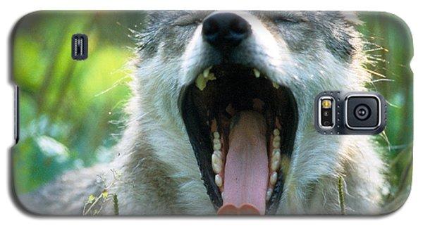 Wolf Yawn Galaxy S5 Case