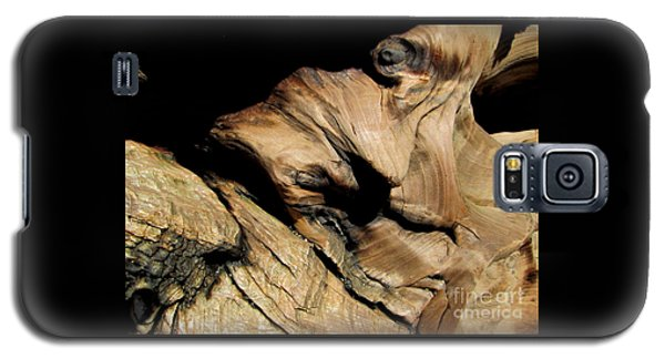 Old Woman Of The Woods Galaxy S5 Case