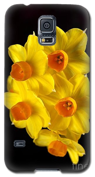 Wonderful Jonquils Galaxy S5 Case