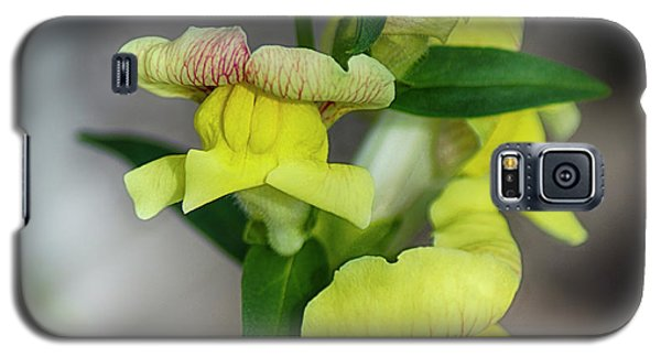 Wonderful Nature - Yellow Antirrhinum Galaxy S5 Case