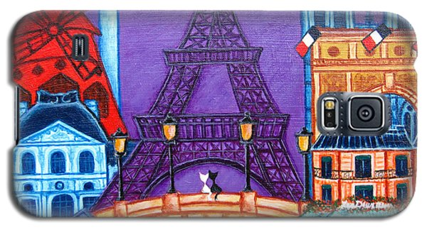 Wonders Of Paris Galaxy S5 Case