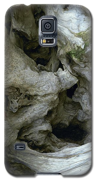 Wood Abstract Galaxy S5 Case