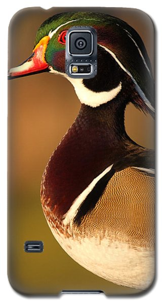Wood Duck Drake Looking Into The Distance Galaxy S5 Case by Max Allen