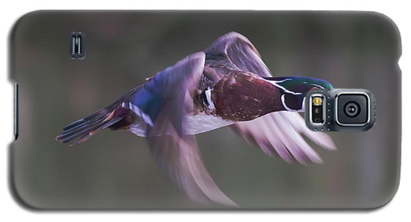 Wood Duck Flight Galaxy S5 Case