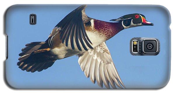 Wood Duck Flying Fast Galaxy S5 Case