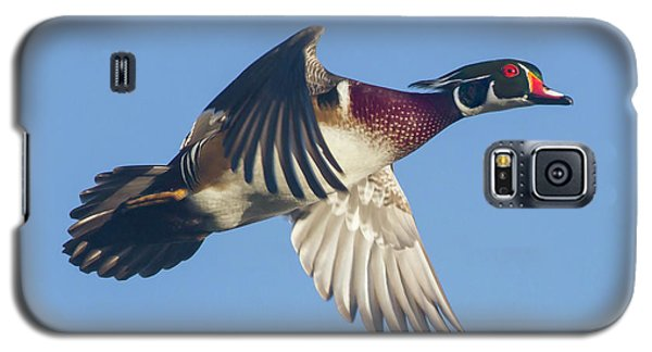 Wood Duck Flying Fast Galaxy S5 Case