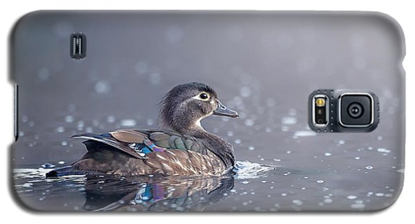 Galaxy S5 Case featuring the photograph Wood Duck Hen by Bill Wakeley