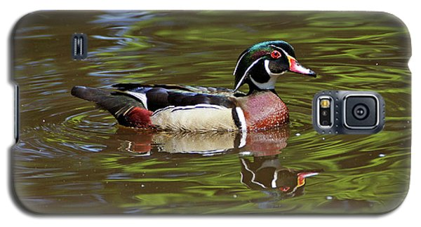 Galaxy S5 Case featuring the photograph Wood Duck by Sandy Keeton