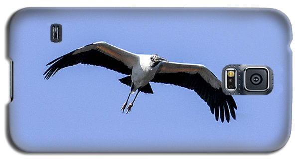 Galaxy S5 Case featuring the photograph Wood Stork by Gary Wightman