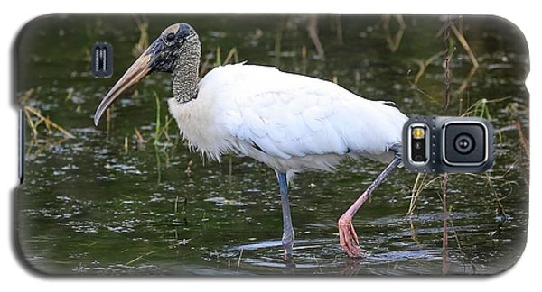 Wood Stork Through The Marsh Galaxy S5 Case
