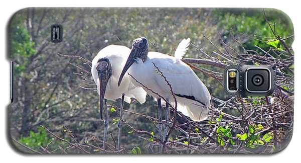 Galaxy S5 Case featuring the photograph Wood Storks by Martha Ayotte