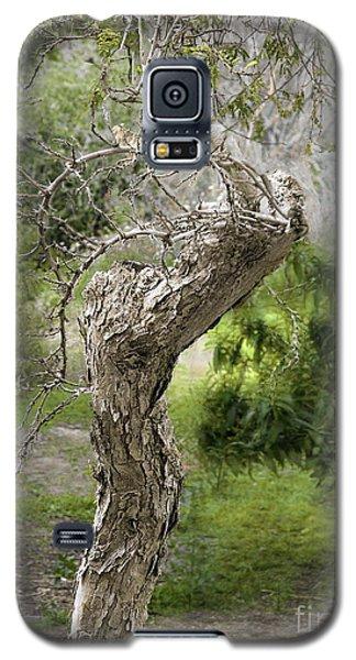 Galaxy S5 Case featuring the photograph Wooden Heart by Viktor Savchenko