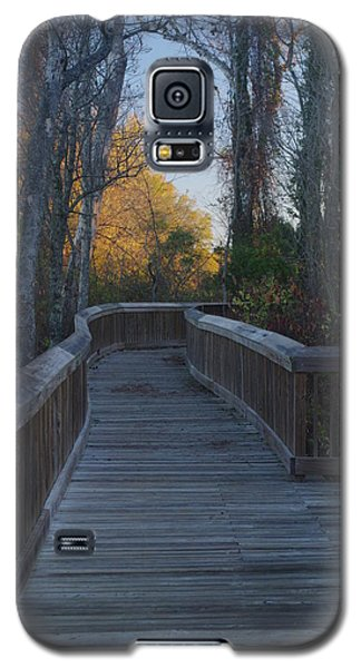 Wooden Path Galaxy S5 Case