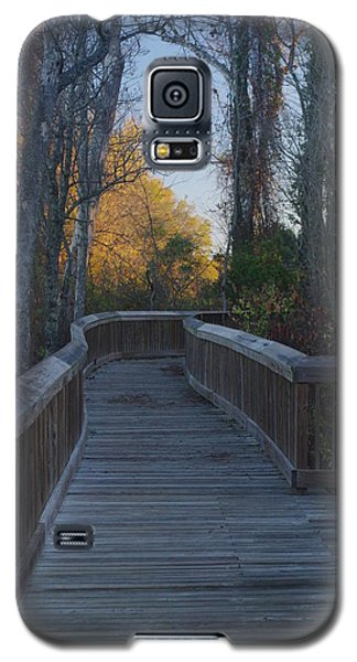 Wooden Path Galaxy S5 Case