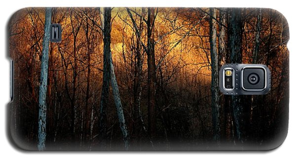 Galaxy S5 Case featuring the photograph Woodland Illuminated by Bruce Patrick Smith