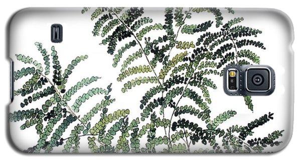 Woodland Maiden Fern Galaxy S5 Case