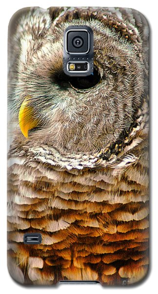 Woodland Owl Galaxy S5 Case by Adam Olsen