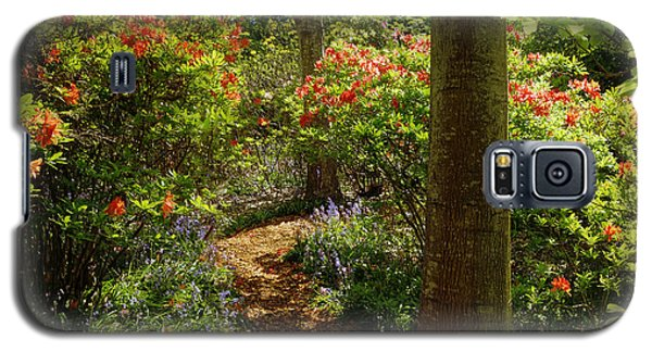 Woodland Path With Rhododendrons Galaxy S5 Case