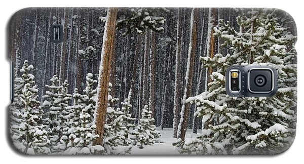 Woodland Snowstorm In Yellowstone Galaxy S5 Case