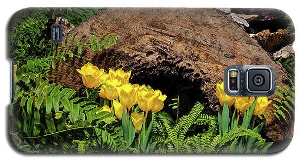 Galaxy S5 Case featuring the photograph Woodland Tulip Garden by Tom Mc Nemar