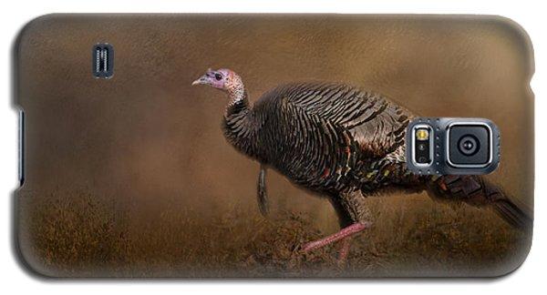 Woodland Walk - Wild Turkey Art Galaxy S5 Case by Jai Johnson