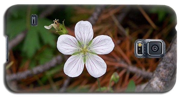 Woodland Wildflower Galaxy S5 Case