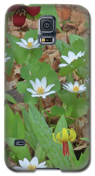 Woodland Wildflowers Galaxy S5 Case by John Burk