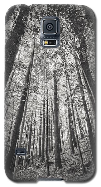 Galaxy S5 Case featuring the photograph Woodlands by Robert Clifford