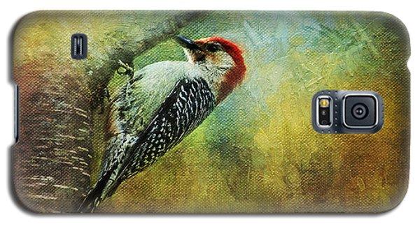 Woodpecker On Cherry Tree Galaxy S5 Case