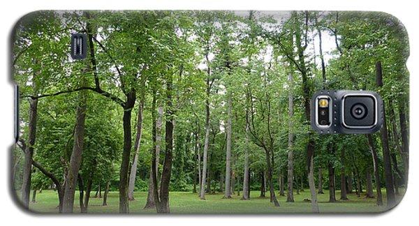 Woods At Lake Redman Galaxy S5 Case by Donald C Morgan