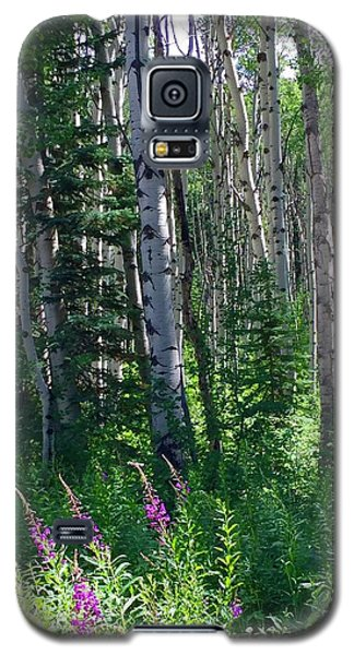 Woods Galaxy S5 Case by Beth Saffer